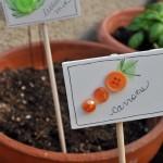 Homemade Carrots & Lettuce Garden Markers