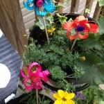 Flower pot Flowers Fifteen MINUTE Friday